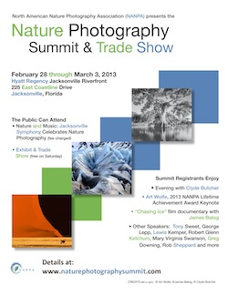 NANPA-2013-Summit-Flyer PDF